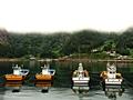 Hyeonpohang Port at Dawn